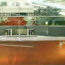 Glasfries Konferenzraum