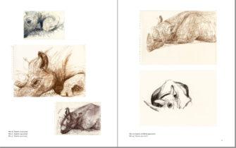 Kalusho, Tsororo und ich. Seite 18-19