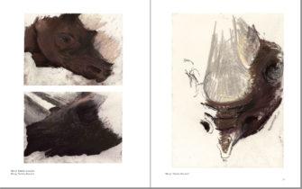 Kalusho, Tsororo und ich. Seite 36-37